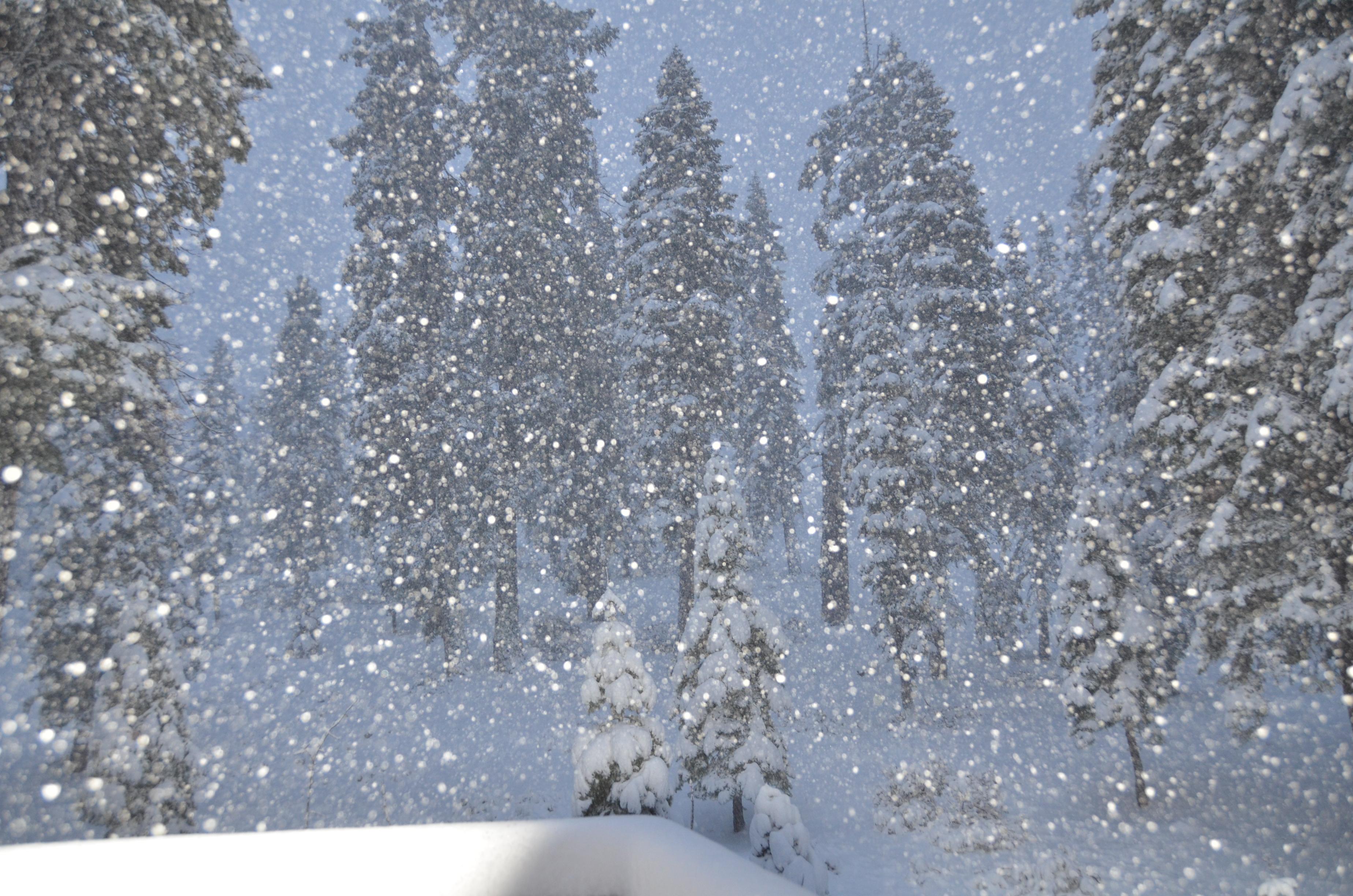 snow at last