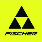 fischer_main-logo_4c_high